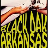 BLACK OAK ARKANSAS, THE BLUES BRATS, THE AVIATORS, BEARWULF, THE SCHNYDE, LYNETTE SKYNYRD